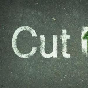 Cut Up